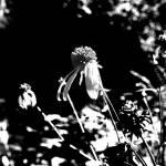 """""""Fall flower"""" by broken_lantern"""