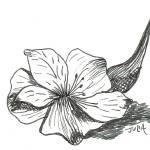 """""""Lilies"""" by julia_art"""