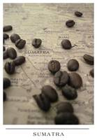 Sumatra  - Beans and Map