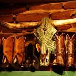 """""""Boots n Bulls"""" by jeffreybowen"""