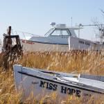 """Boat graveyard"" by sail"