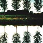 """""""Boat & Poplars"""" by kenart"""