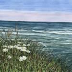 """""""MontaukCliffs"""" by sbuschman"""