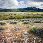"""tahoe Plains"" by PhotographerAri"