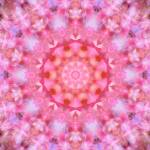 """Pink Floral Mandala - 1"" by lightvision"
