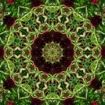 """Burgundy Green Mandala 2"" by lightvision"