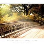 """Autumn Light - Central Park, NY"" by CCordelia"