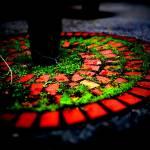 """Circle of Bricks"" by johnburnett"