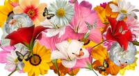 flower collage template