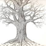 """oaKTree"" by bRAndOnMOore"