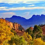 """fall colors in zion national park on way to kolob"" by houstonryan"