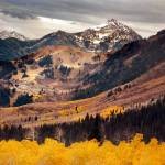 """Mount timpanogos from th e top golden aspens"" by houstonryan"