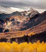 Mount timpanogos from th e top golden aspens