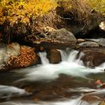 """american fork river fall 2010 17th of October 5"" by houstonryan"
