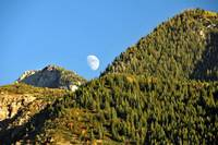 Moon rising over the wasatch mountain range pine t