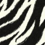 """Zebra effect"" by Sheara"