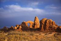 Arches National Park ( 125)