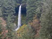 Silver Creek Falls In Autumn