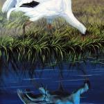 """Reflections"" by natswildlifeart"