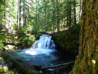The Beauty Of Nature Page By Page