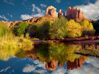 Sedona Reflection In A Stream