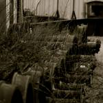 """Overgrown Train Wheels"" by TimothySweeneyPhotography"