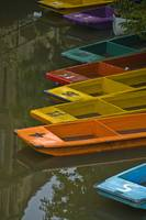Bright Punting Boats, Oxford
