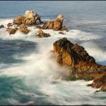 """Point Lobos"" by PsychaSec"