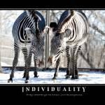 """Individuality"" by LindaFinstad"