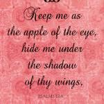 """""""Psalms 17-8"""" by AppleoftheEye"""