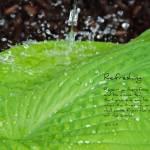 """Refreshing Acts 3-19"" by AppleoftheEye"