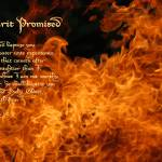 """Spirit Promised Matthew 3-11"" by AppleoftheEye"