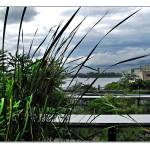 """Highline View NYC"" by jbjoani2"