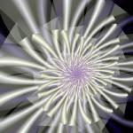 """""""Shasta daisy"""" by pelmof"""