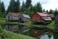 Boathouses Along Hammer Slough, Alaska