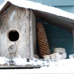 """SnowBirdhouse5"" by AppleoftheEye"
