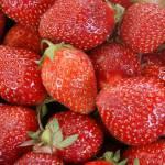 """""""Strawberries 6 x 4"""" by AppleoftheEye"""