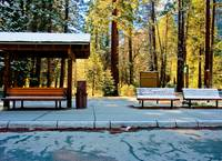 Sentinal Bridge Bus Stop, Yosemite Valley