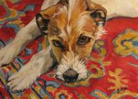 Jack Russell on a Red Rug
