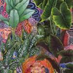 """Patiguina Samai"" by Ayahuasca_Visions"
