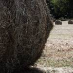"""Hay Bales"" by noxreallyxhonest"