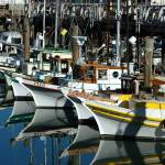 """Boats at Fishermans Wharf"" by GDada"