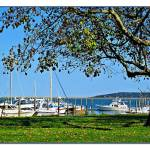 """Plymouth Harbor"" by jbjoani2"