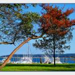 """Plymouth Harbor in Autumn"" by jbjoani2"
