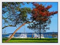 Plymouth Harbor in Autumn