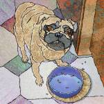 """Dinnertime Pug"" by maryostudio"