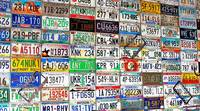 Licence Plate Wall