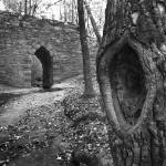 """Poinsett Bridge"" by KOsburn"