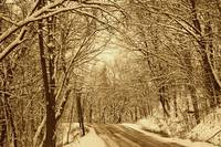 Winter in Sepia