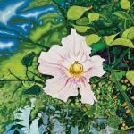 """""""Star Flower (Yıldız Çiçeği)"""" by KrisManvell"""